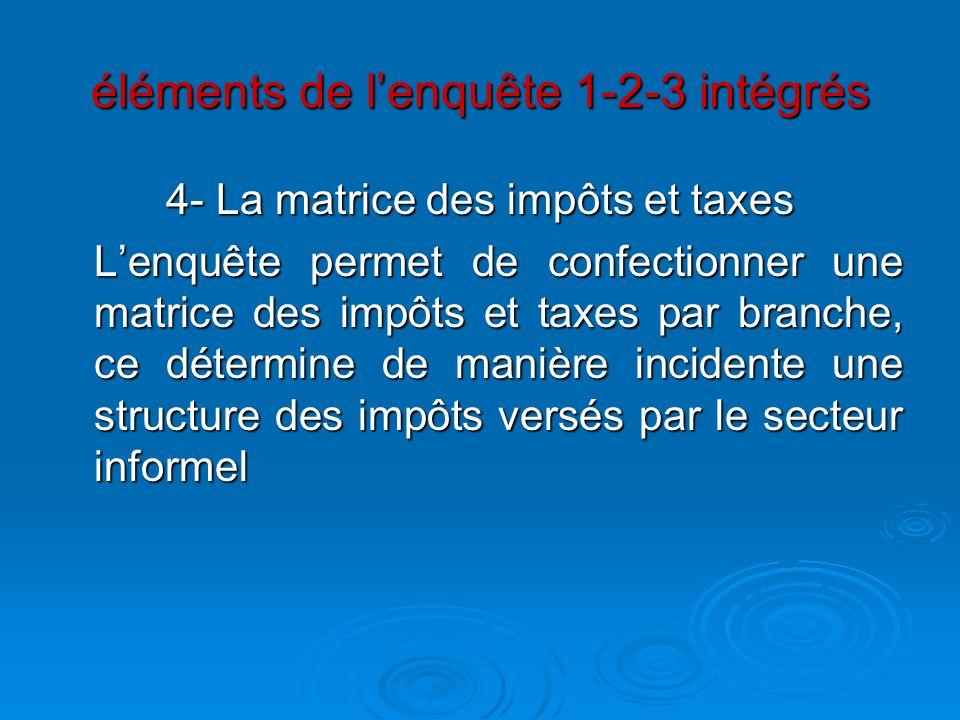 éléments de lenquête 1-2-3 intégrés 4- La matrice des impôts et taxes Lenquête permet de confectionner une matrice des impôts et taxes par branche, ce