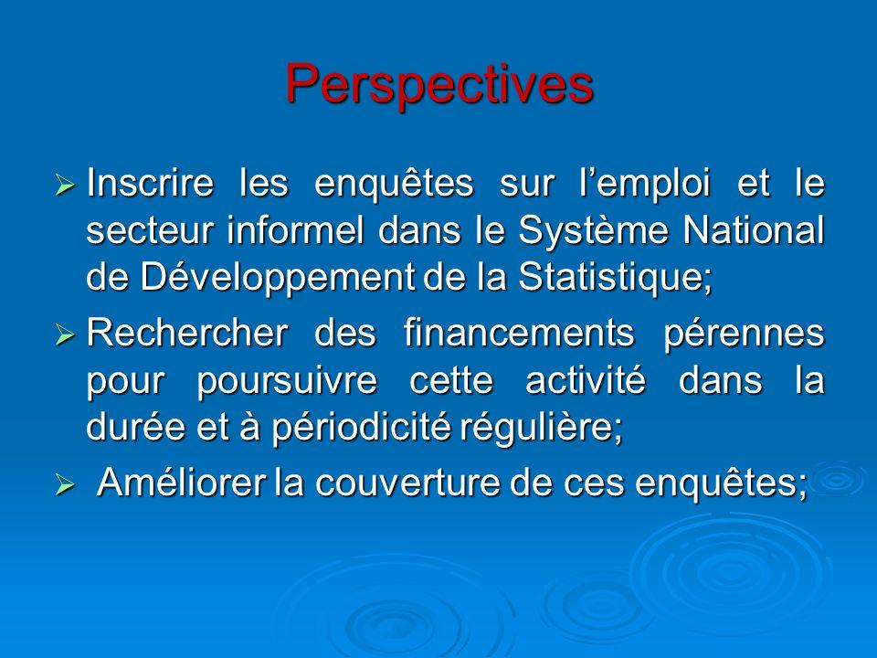 Perspectives Inscrire les enquêtes sur lemploi et le secteur informel dans le Système National de Développement de la Statistique; Inscrire les enquêt