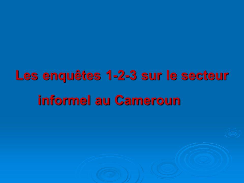 Objectifs spécifiques des enquêtes 1-2-3 1 ère enquête en 1993 - Connaître les conditions demploi à Yaoundé; - mesurer lactivité informelle dans cette ville.