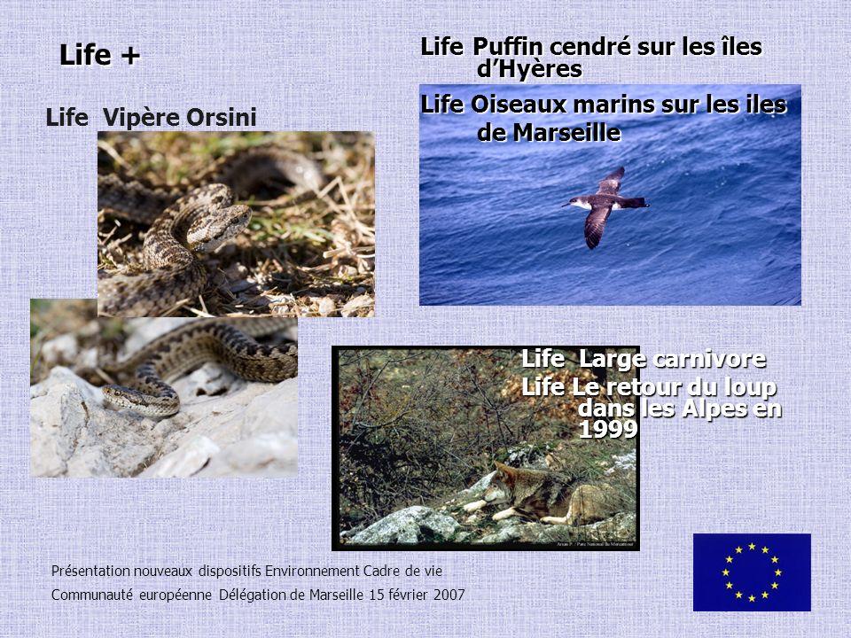 Life + Présentation nouveaux dispositifs Environnement Cadre de vie Communauté européenne Délégation de Marseille 15 février 2007 Life Vipère Orsini L