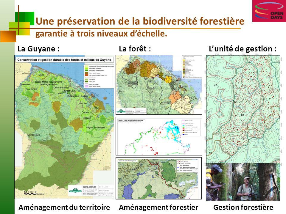 Gestion et exploitation forestière en Guyane : Une révolution des pratiques pour servir le moindre impact Paramètres sylvicoles issus de la recherche expérimentale : rotation longue de 65 ans ; prélèvements: 5 arbres/ha, diamètre > 55 cm.