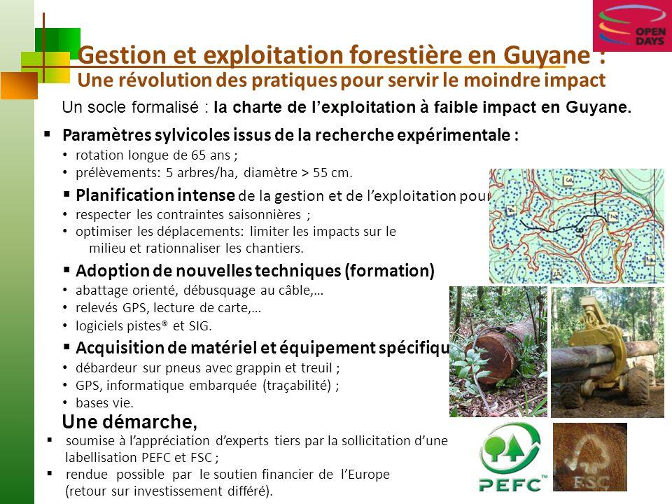 La Filière Forêt & Bois en Guyane Une stratégie : contribuer au développement du Territoire Une petite filière productive en pleine mutation, atypique en Europe comme en Amérique du Sud.