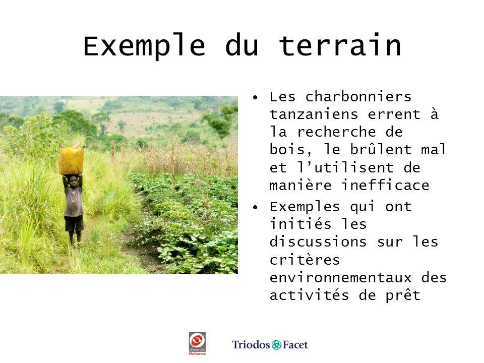Exemple du terrain Les charbonniers tanzaniens errent à la recherche de bois, le brûlent mal et lutilisent de manière inefficace Exemples qui ont initiés les discussions sur les critères environnementaux des activités de prêt