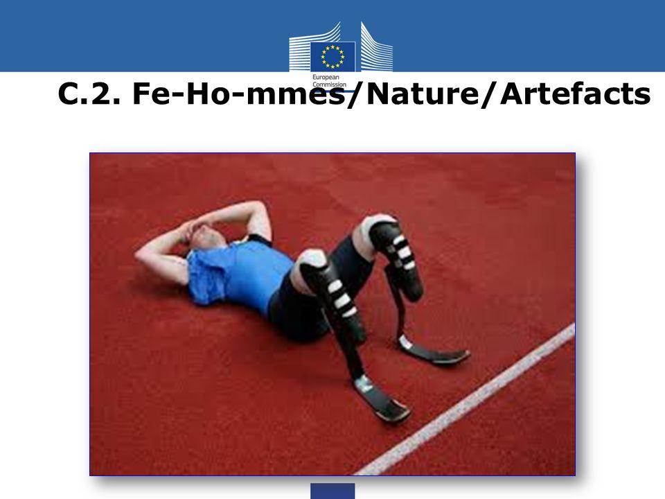 C.2. Fe-Ho-mmes/Nature/Artefacts