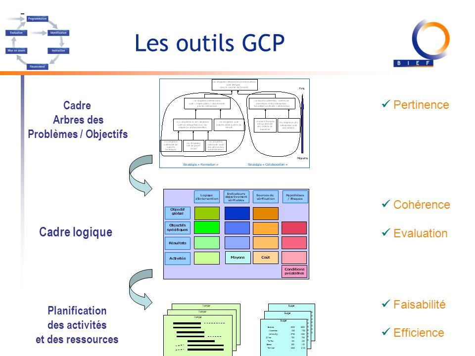Les outils GCP Salaries Allowances Vehicle Op. Office Tel/Fax Seeds Fertiliser 50005500 12501750 37504250 750 400 8501100 23003100 Budget Workplan Pla