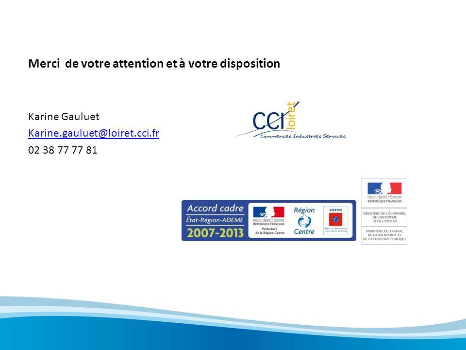 Merci de votre attention et à votre disposition Karine Gauluet Karine.gauluet@loiret.cci.fr 02 38 77 77 81