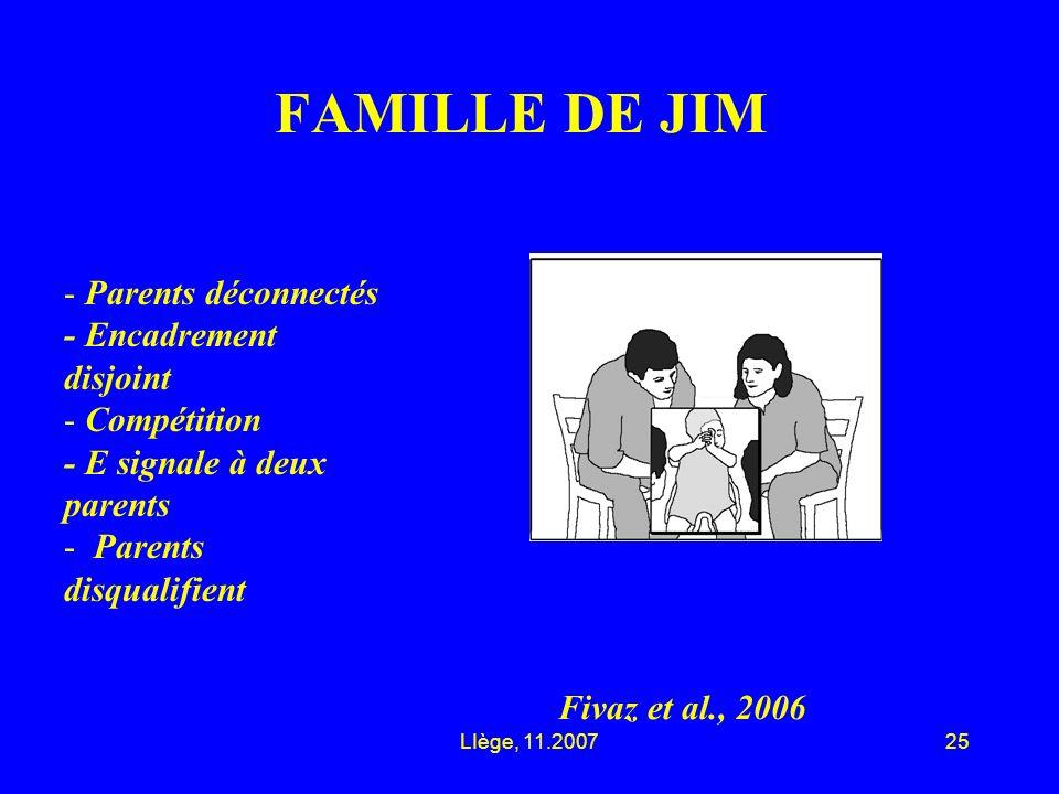 LIège, 11.200725 FAMILLE DE JIM Fivaz et al., 2006 - Parents déconnectés - Encadrement disjoint - Compétition - E signale à deux parents - Parents disqualifient
