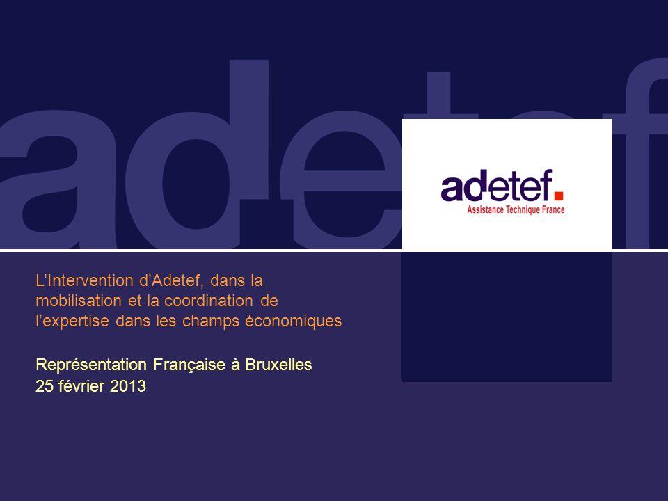 LIntervention dAdetef, dans la mobilisation et la coordination de lexpertise dans les champs économiques Représentation Française à Bruxelles 25 février 2013