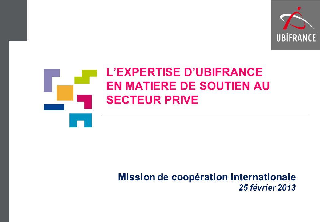 LEXPERTISE DUBIFRANCE EN MATIERE DE SOUTIEN AU SECTEUR PRIVE Mission de coopération internationale 25 février 2013