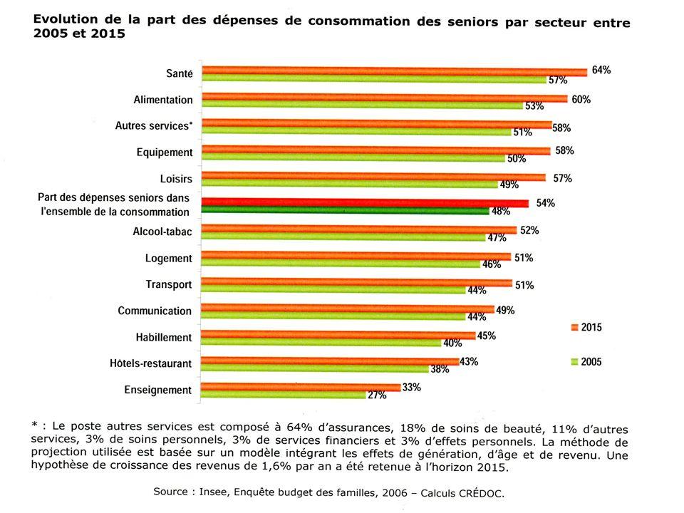 Dici à 2015, les seniors pèseront de façon plus significative dans léquipement du foyer (58% du marché).