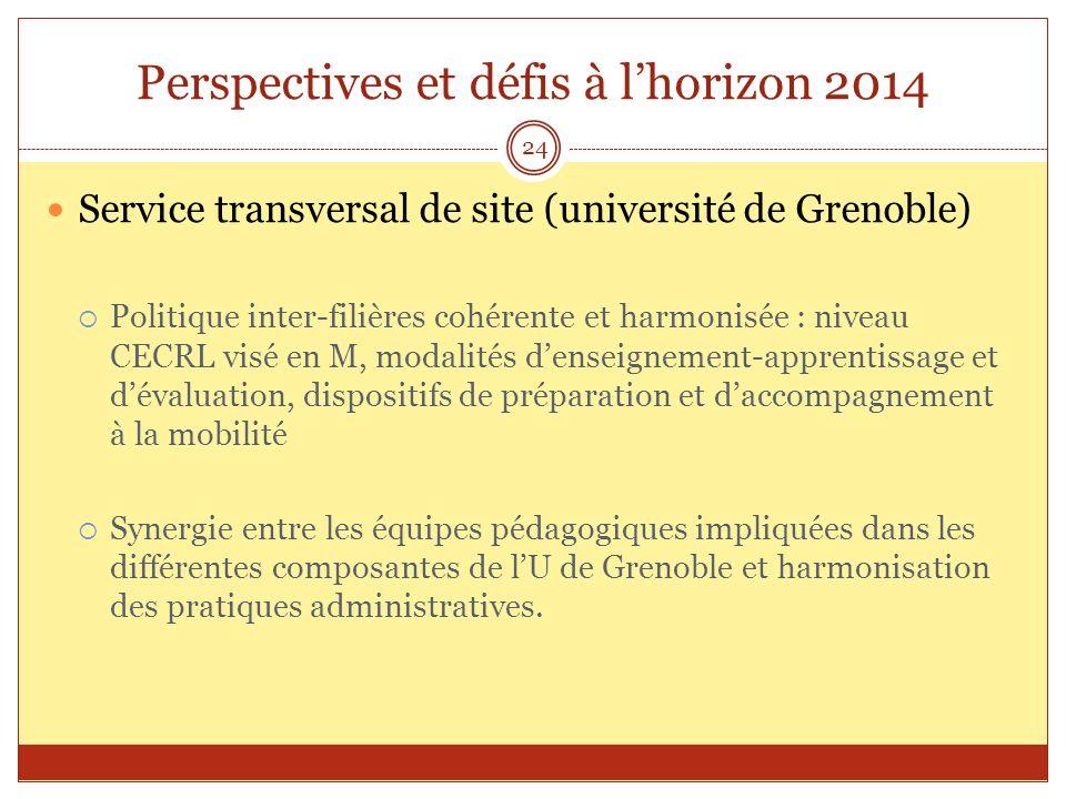 Perspectives et défis à lhorizon 2014 Service transversal de site (université de Grenoble) Politique inter-filières cohérente et harmonisée : niveau C