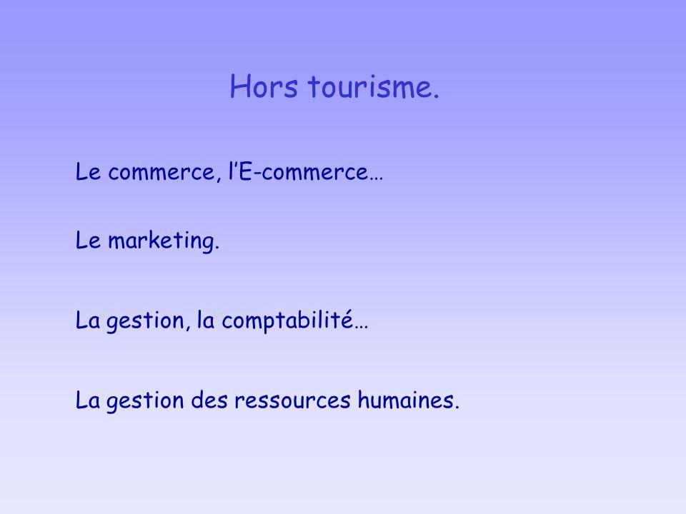 Hors tourisme. Le commerce, lE-commerce… La gestion des ressources humaines. La gestion, la comptabilité… Le marketing.