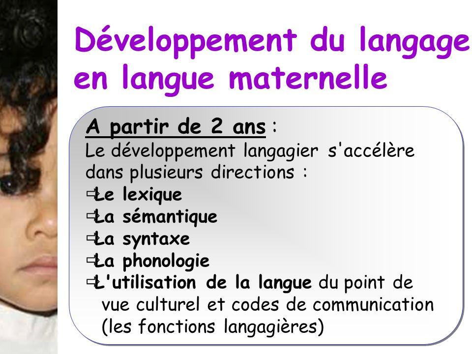 Développement du langage en langue maternelle A partir de 2 ans : Le développement langagier s'accélère dans plusieurs directions : Le lexique La séma