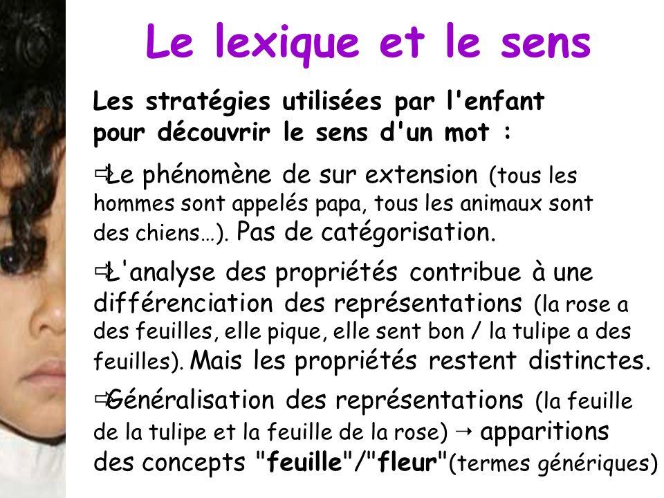 Le lexique et le sens Les stratégies utilisées par l'enfant pour découvrir le sens d'un mot : Le phénomène de sur extension (tous les hommes sont appe
