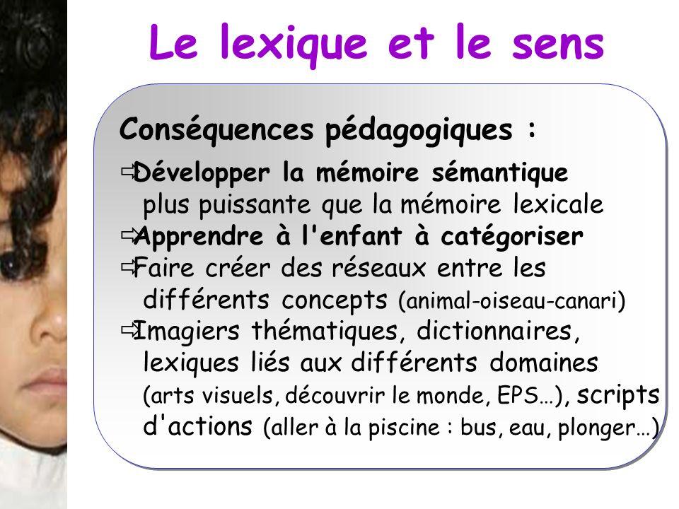 Le lexique et le sens Conséquences pédagogiques : Développer la mémoire sémantique plus puissante que la mémoire lexicale Apprendre à l'enfant à catég