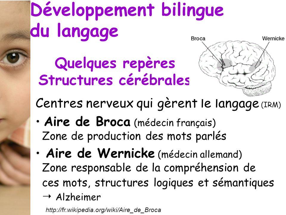 Quelques repères Structures cérébrales http://fr.wikipedia.org/wiki/Aire_de_Broca Centres nerveux qui gèrent le langage (IRM) Aire de Broca (médecin f