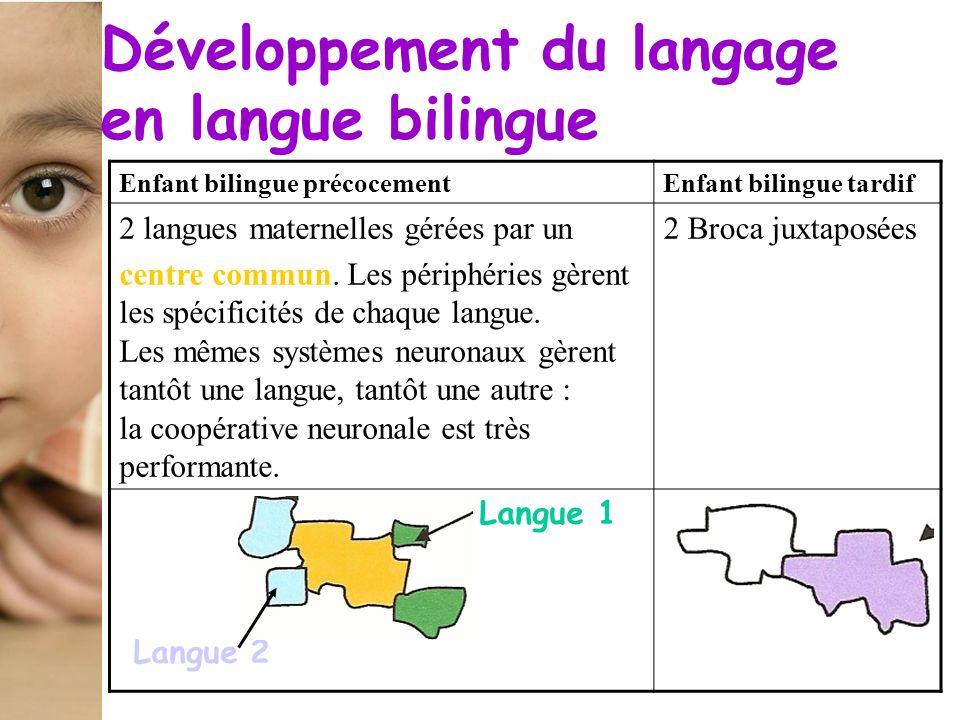 Enfant bilingue précocementEnfant bilingue tardif 2 langues maternelles gérées par un centre commun. Les périphéries gèrent les spécificités de chaque