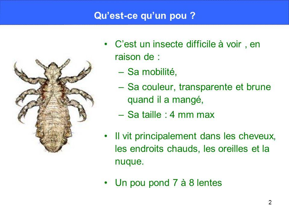 2 Cest un insecte difficile à voir, en raison de : –Sa mobilité, –Sa couleur, transparente et brune quand il a mangé, –Sa taille : 4 mm max Il vit pri