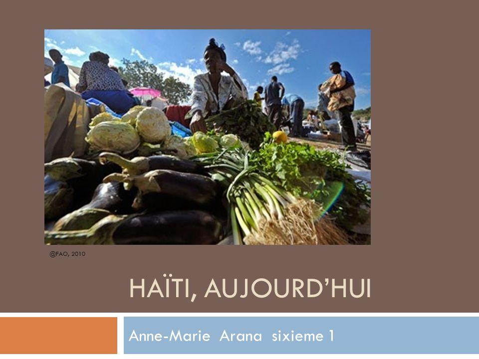 HAÏTI, AUJOURDHUI Anne-Marie Arana sixieme 1 @FAO, 2010