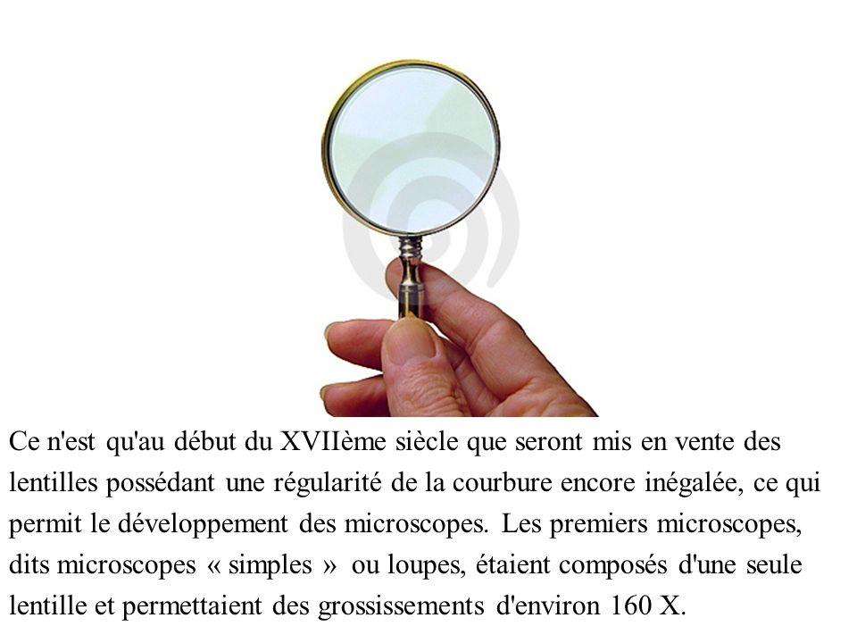 Au fil du temps furent créés les microscopes « composés », avec deux lentilles convergentes, qui permirent des grossissements bien plus importants.