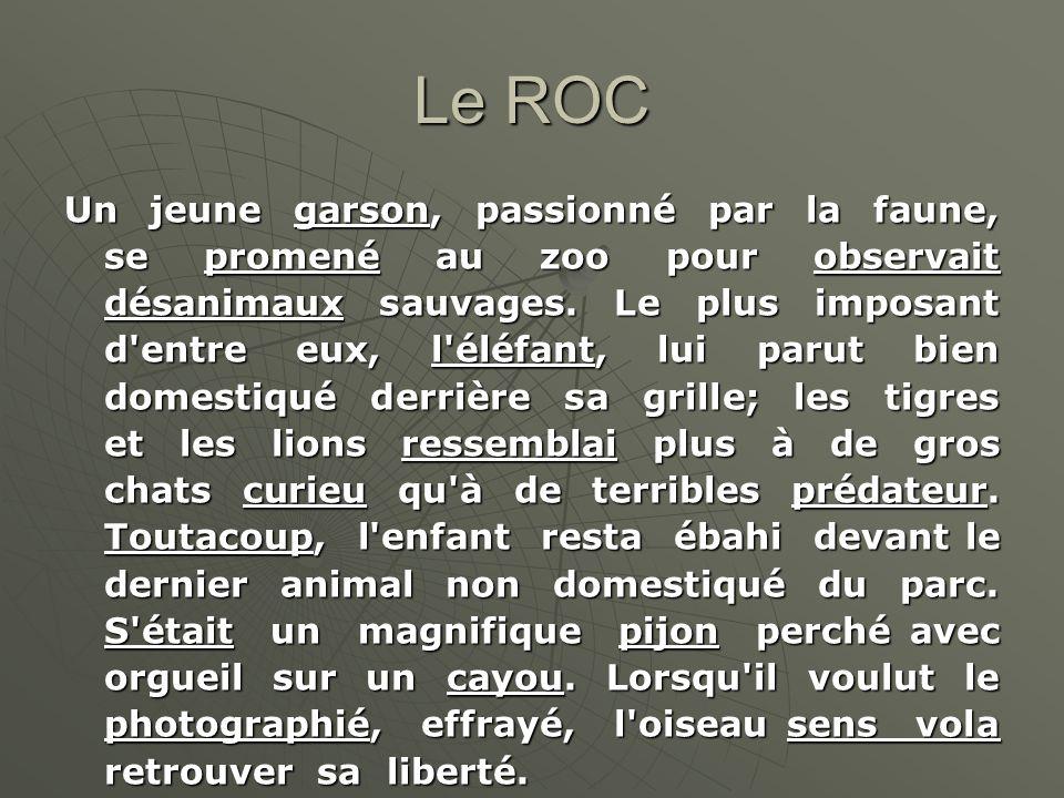Le ROC Un jeune garson, passionné par la faune, se promené au zoo pour observait désanimaux sauvages. Le plus imposant d'entre eux, l'éléfant, lui par