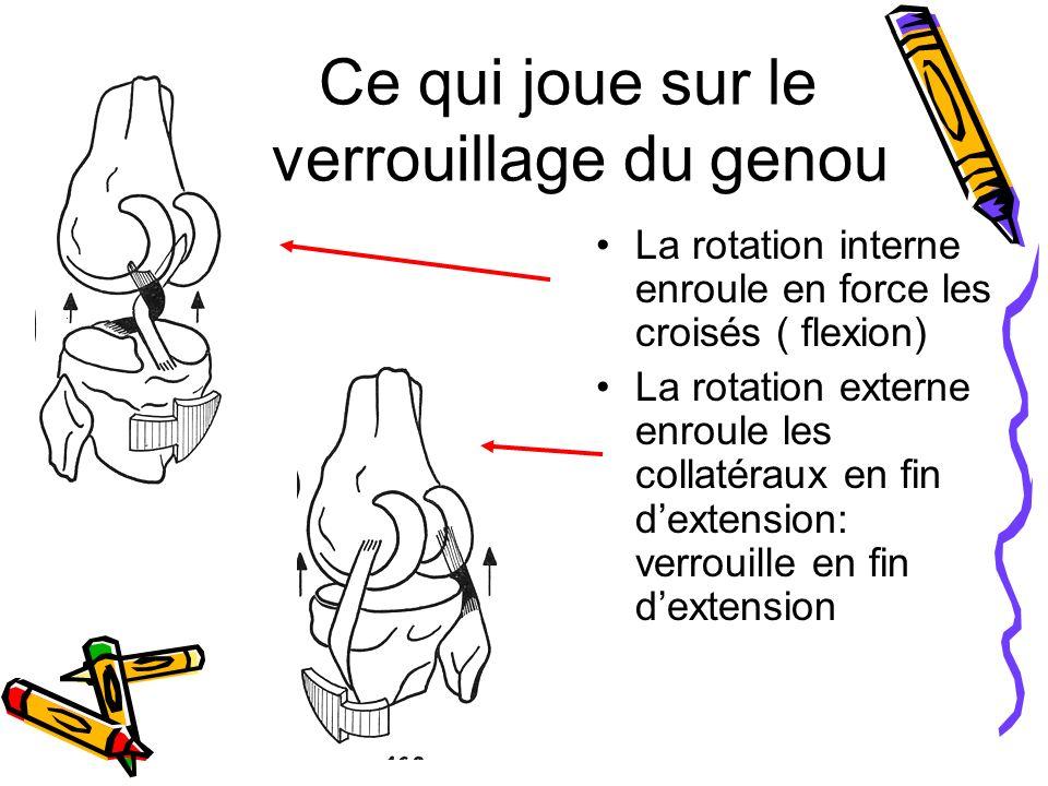 Ce qui joue sur le verrouillage du genou La rotation interne enroule en force les croisés ( flexion) La rotation externe enroule les collatéraux en fin dextension: verrouille en fin dextension