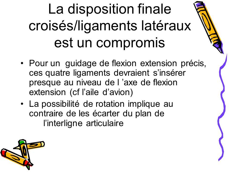 La disposition finale croisés/ligaments latéraux est un compromis Pour un guidage de flexion extension précis, ces quatre ligaments devraient sinsérer presque au niveau de l axe de flexion extension (cf laile davion) La possibilité de rotation implique au contraire de les écarter du plan de linterligne articulaire