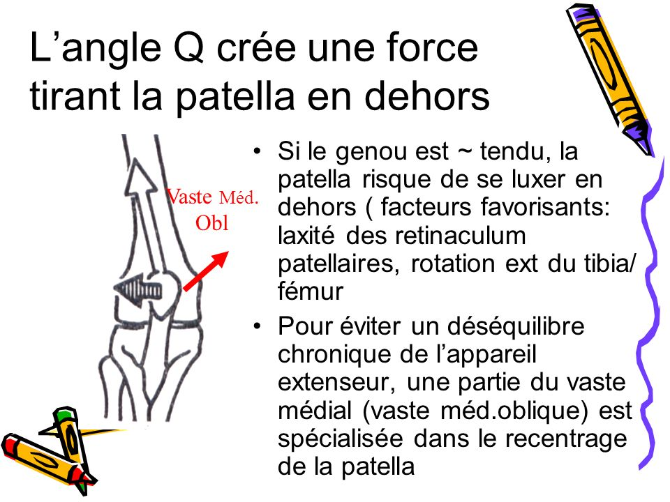 Langle Q crée une force tirant la patella en dehors Si le genou est ~ tendu, la patella risque de se luxer en dehors ( facteurs favorisants: laxité des retinaculum patellaires, rotation ext du tibia/ fémur Pour éviter un déséquilibre chronique de lappareil extenseur, une partie du vaste médial (vaste méd.oblique) est spécialisée dans le recentrage de la patella Vaste Méd.