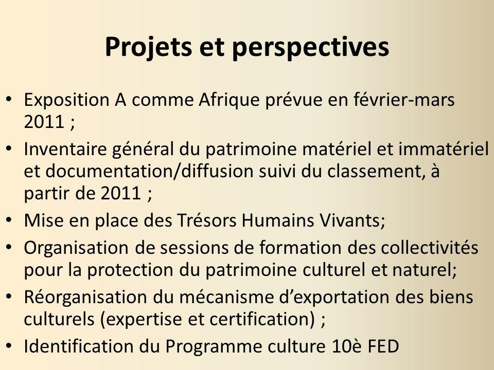 Projets et perspectives Exposition A comme Afrique prévue en février-mars 2011 ; Inventaire général du patrimoine matériel et immatériel et documentat
