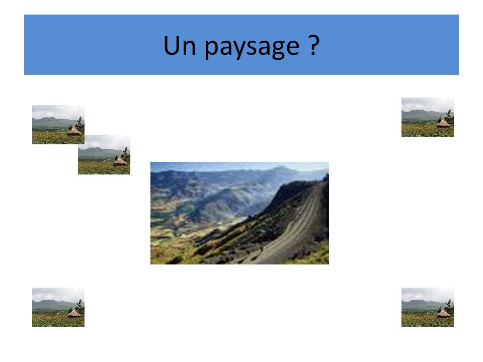 Un paysage ?