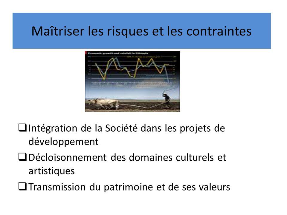 Maîtriser les risques et les contraintes Intégration de la Société dans les projets de développement Décloisonnement des domaines culturels et artisti