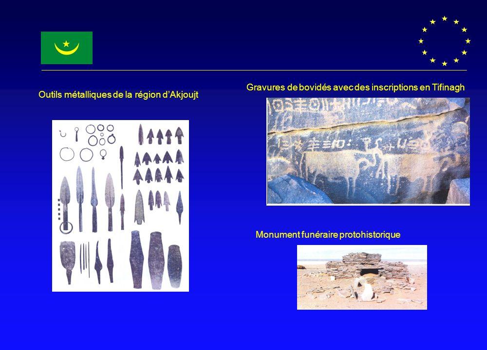 Monument funéraire protohistorique Gravures de bovidés avec des inscriptions en Tifinagh Outils métalliques de la région dAkjoujt