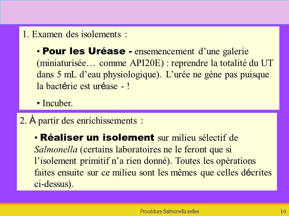 Procédure Salmonella selles10 1. Examen des isolements : Pour les Uréase - ensemencement dune galerie (miniaturisée… comme API20E) : reprendre la tota