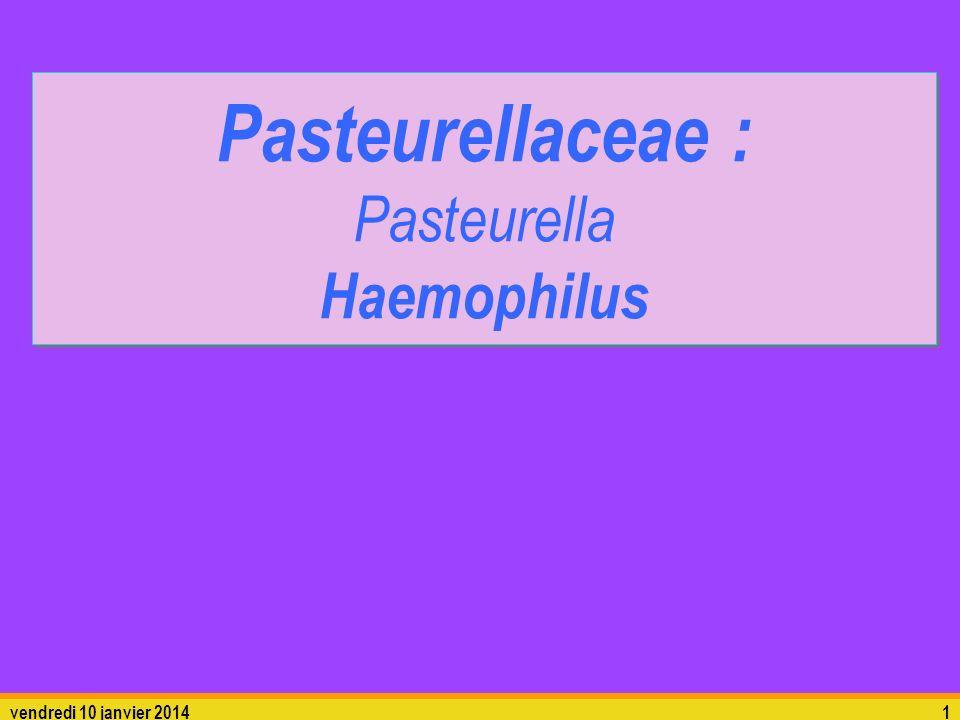 vendredi 10 janvier 20141 Pasteurellaceae : Pasteurella Haemophilus