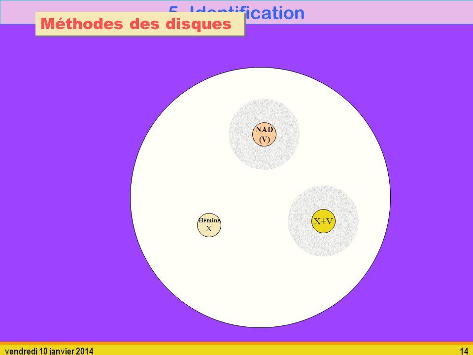 vendredi 10 janvier 201414 5. Identification Méthodes des disques Hémine X X+V NAD (V)