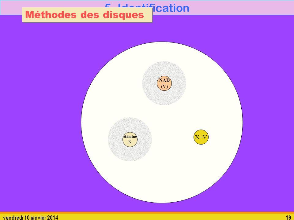 vendredi 10 janvier 201416 5. Identification Méthodes des disques Hémine X X+V NAD (V)