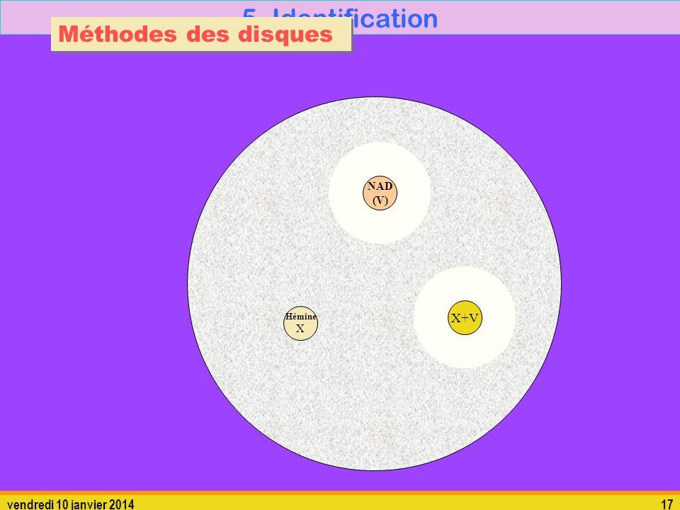 vendredi 10 janvier 201417 5. Identification Méthodes des disques Hémine X X+V NAD (V)