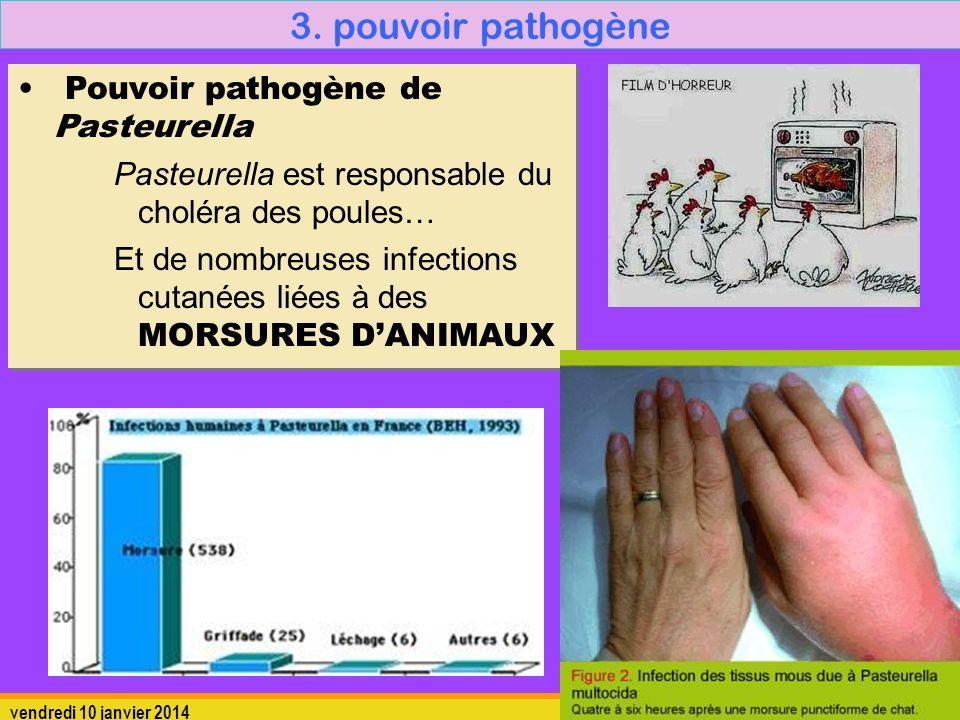 vendredi 10 janvier 20148 3. pouvoir pathogène Pouvoir pathogène de Pasteurella Pasteurella est responsable du choléra des poules… Et de nombreuses in