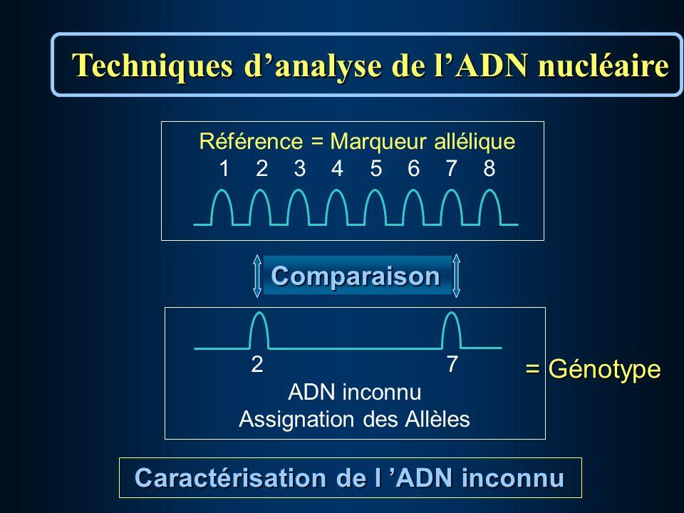 Comparaison Référence = Marqueur allélique 1 2 3 4 5 6 7 8 2 7 ADN inconnu Assignation des Allèles Comparaison Caractérisation de l ADN inconnu Techniques danalyse de lADN nucléaire = Génotype