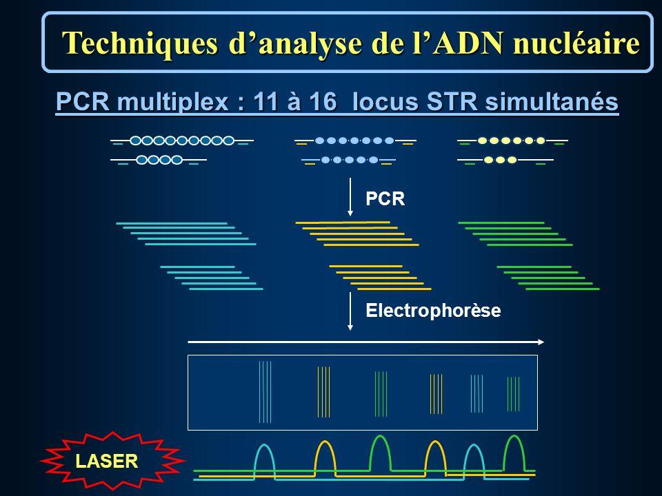 PCR Electrophorèse PCR multiplex : 11 à 16 locus STR simultanés LASER Techniques danalyse de lADN nucléaire