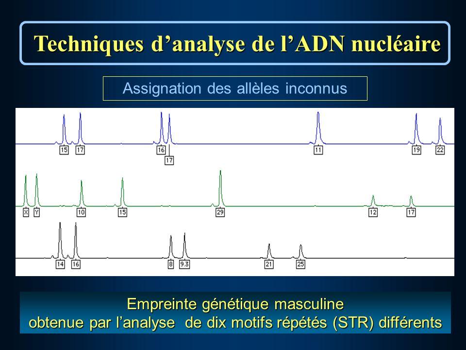 Empreinte génétique masculine obtenue par lanalyse de dix motifs répétés (STR) différents Techniques danalyse de lADN nucléaire Assignation des allèles inconnus