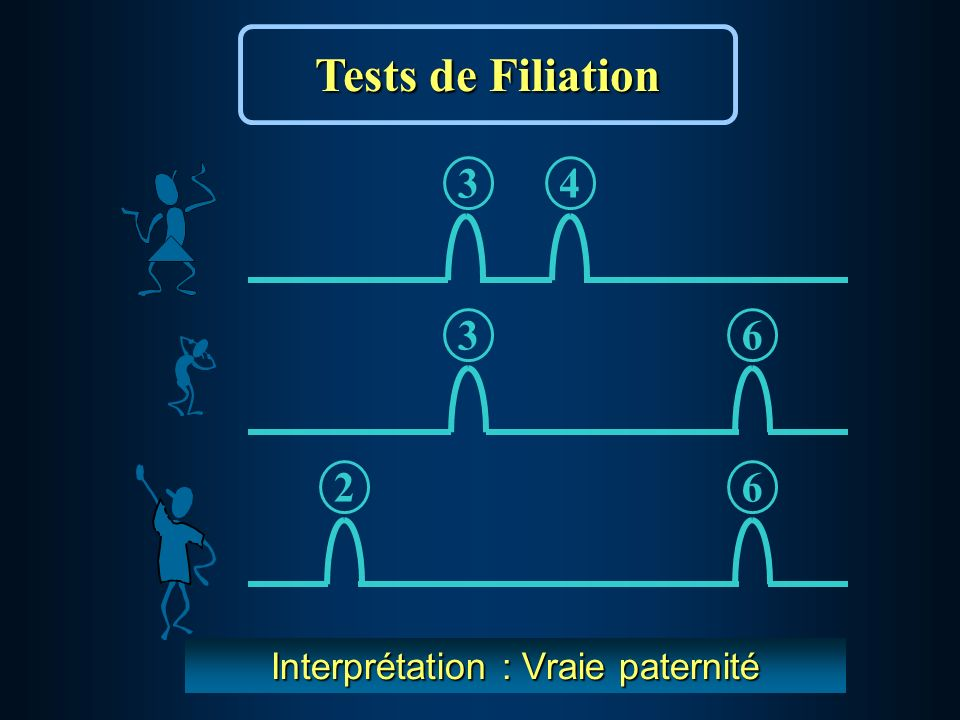 36 34 62 Interprétation : Vraie paternité Tests de Filiation