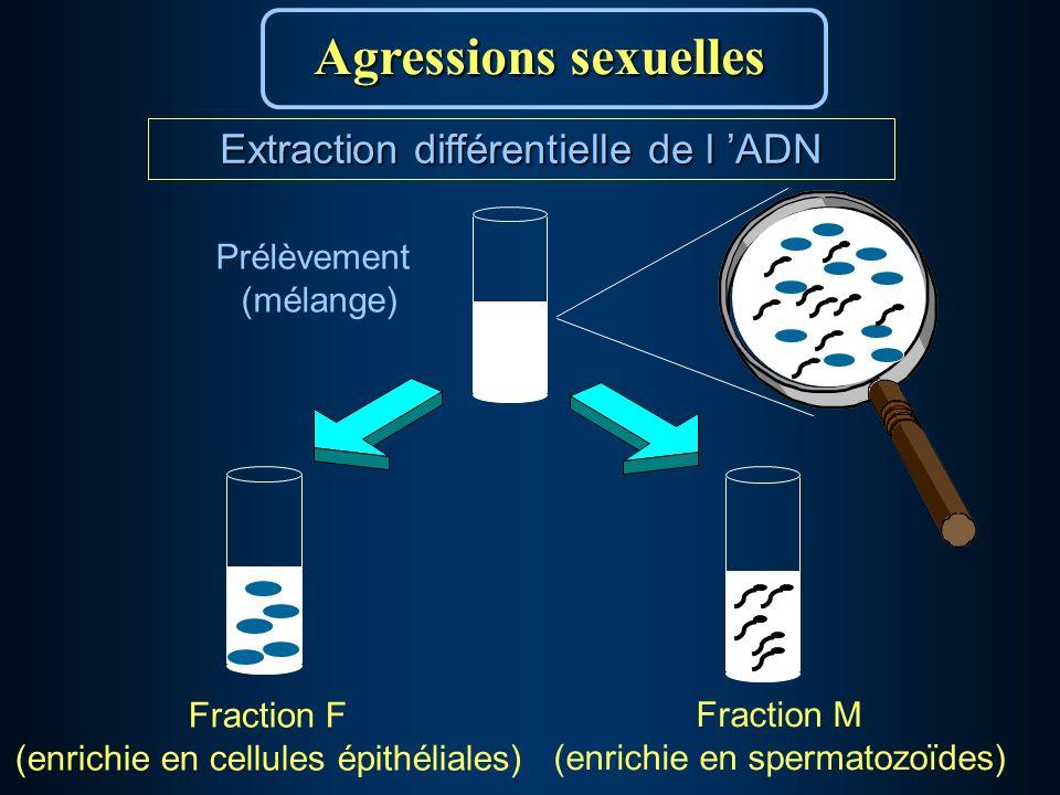 Prélèvement (mélange) Fraction M (enrichie en spermatozoïdes) Fraction F (enrichie en cellules épithéliales) Agressions sexuelles Extraction différentielle de l ADN