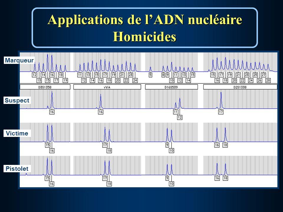 Marqueur Victime Suspect Pistolet Applications de lADN nucléaire Homicides