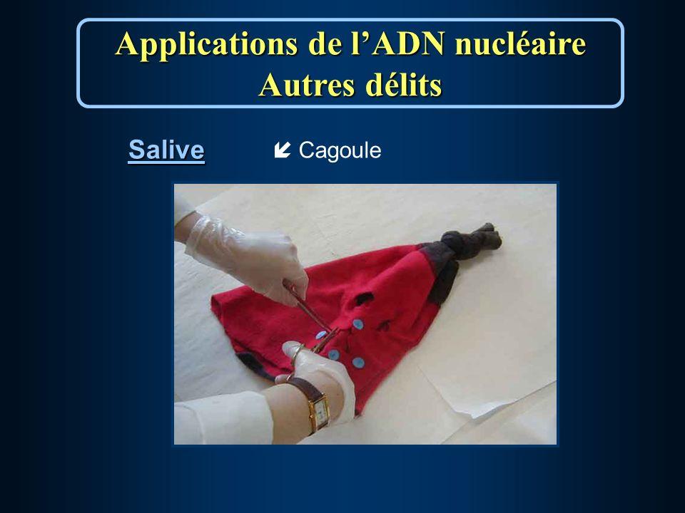 Salive Applications de lADN nucléaire Autres délits íCagoule