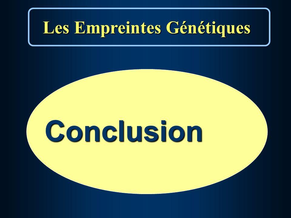 Les Empreintes Génétiques Conclusion