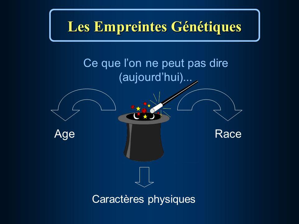Les Empreintes Génétiques Ce que lon ne peut pas dire (aujourdhui)... RaceAge Caractères physiques