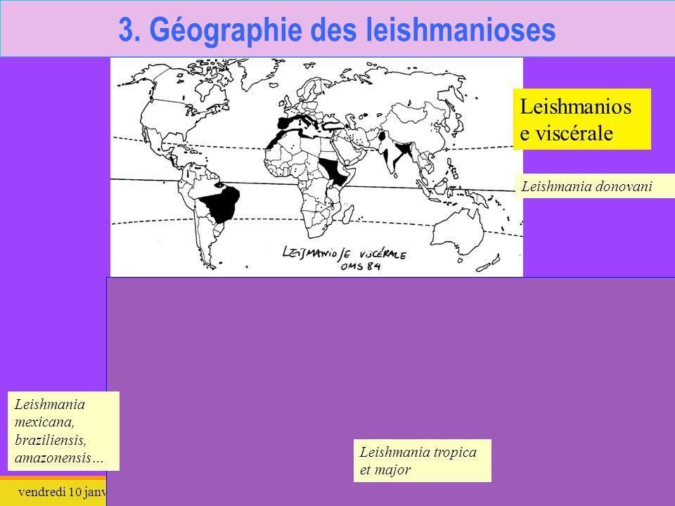 vendredi 10 janvier 2014Leishmania9 3. Géographie des leishmanioses Ancien monde Nouveau monde Leishmanios e viscérale Leishmanios e cutanée et cutané