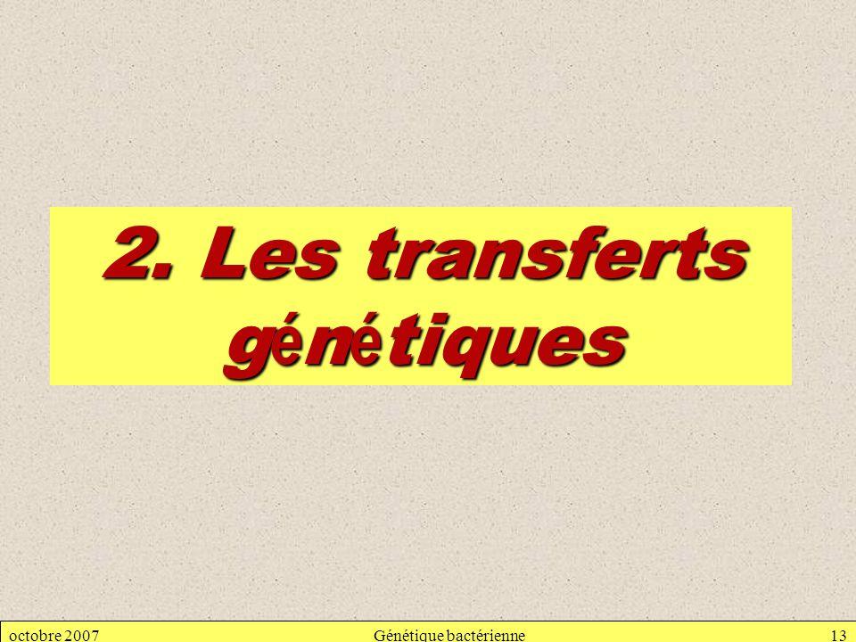 octobre 2007Génétique bactérienne13 2. Les transferts g é n é tiques
