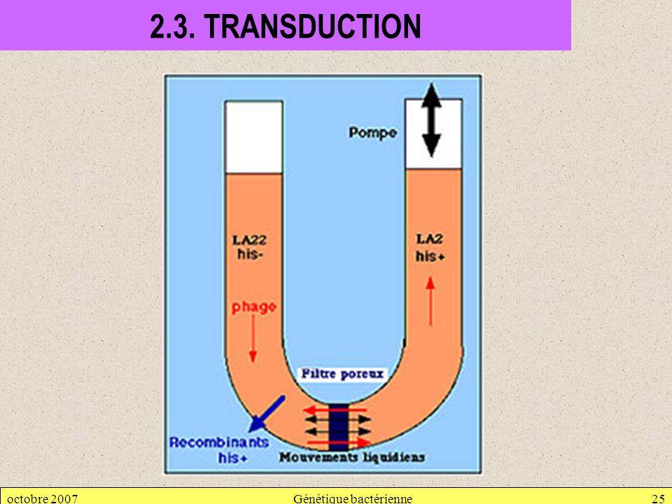 octobre 2007Génétique bactérienne25 2.3. TRANSDUCTION
